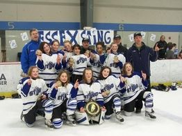 Essex Youth Hockey Opens in new window